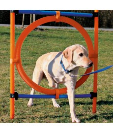 Trixie Dog Agility Ring-Blue Orange