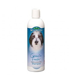 Bio-Groom 'N'Fresh Odour Eliminating Shampoo-355ml