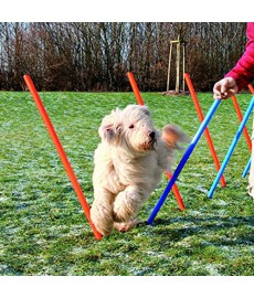 Trixie Dog Agility Slalom - 12 pcs