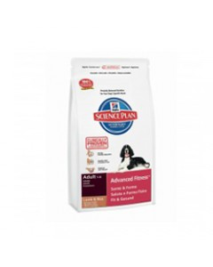 Hills Science Plan Adult Lamb and Rice Dog Food 3 Kg