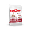 Royal Canin Medium Starter - 4 Kg